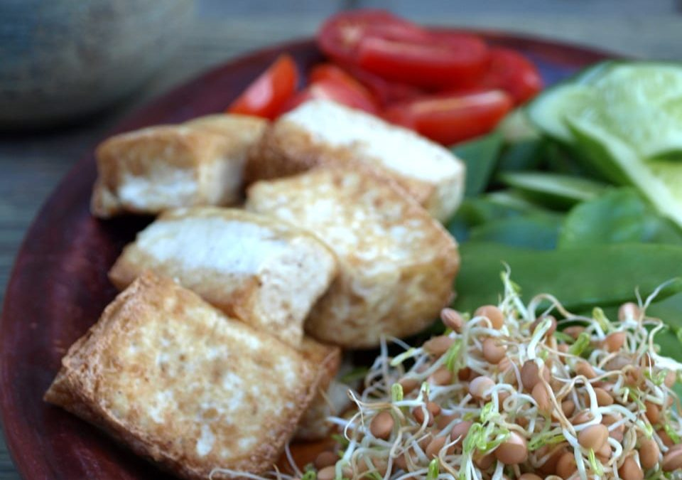 Home-Made Gado Gado and Grow Your Own Sprouts!